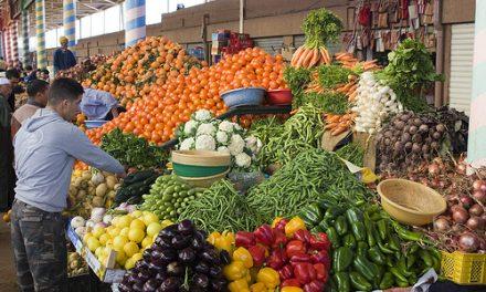 HAUSSE DE 3.8% DES EXPORTATIONS DANS LES SECTEURS AGRICOLE ET AGROALIMENTAIRE