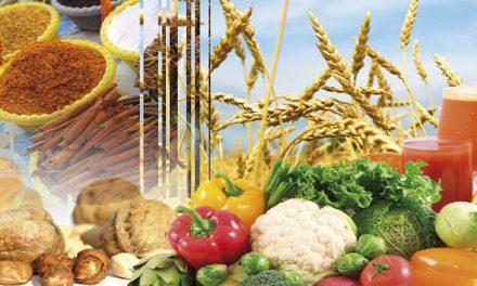 Les exportations des produits agro-alimentaires en hausse de 97%