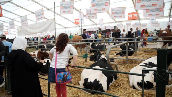 LA 15è édition du Salon international de l'Agriculture se prépare à accueillir 900.000 visiteurs