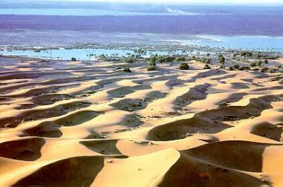 Dakhla, entre mer et désert 9