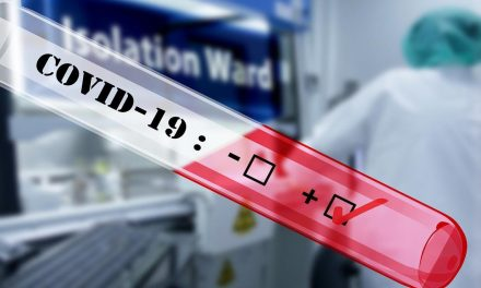 Coronavirus: 22 nouveaux cas, 676 au total