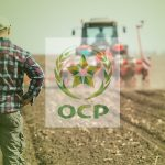 Benguérir: Le Groupe OCP accompagne plus de 30 Startups