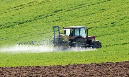 Activité agricole: la production se poursuit et couvre largement les besoins de consommation