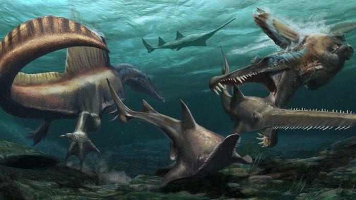 """Maroc : découverte des restes du premier dinosaure aquatique """"Spinosaurus"""" connu au monde"""