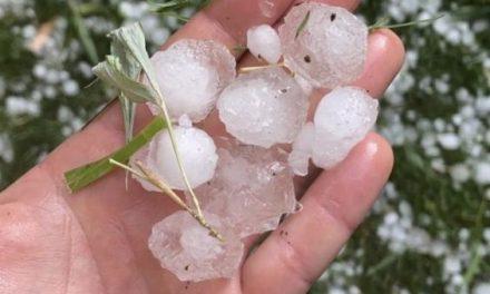 Tempête de grêle dans la région Fès-Meknès : Plus de 9.000 ha affectés