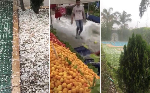 Tempête de grêle dans la région Fès-Meknès : Plus de 9.000 ha affectés 1