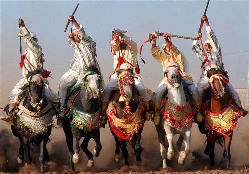 Les chevaux et la fantasia au Maroc 2