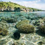 Journée mondiale des océans  à l'ère Covid-19