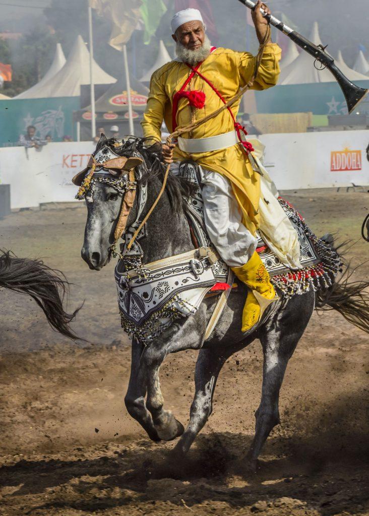 Les chevaux et la fantasia au Maroc 6