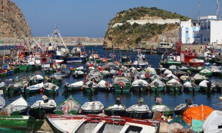 Le secteur de la pêche maritime à Al Hoceima poursuit son activité dans le respect des mesures préventives
