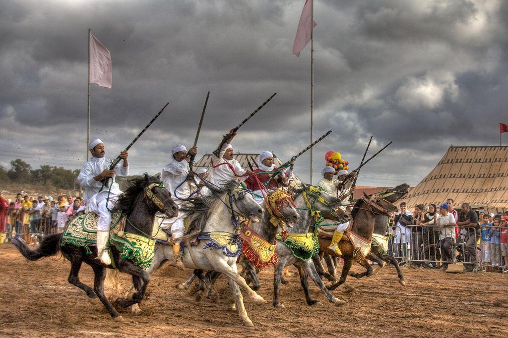 Les chevaux et la fantasia au Maroc 10