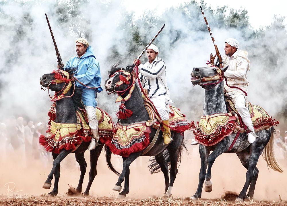 Les chevaux et la fantasia au Maroc 9