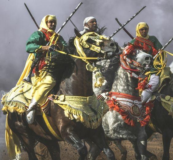 Les chevaux et la fantasia au Maroc 4
