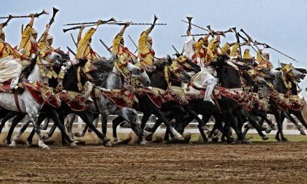 Les chevaux et la fantasia au Maroc