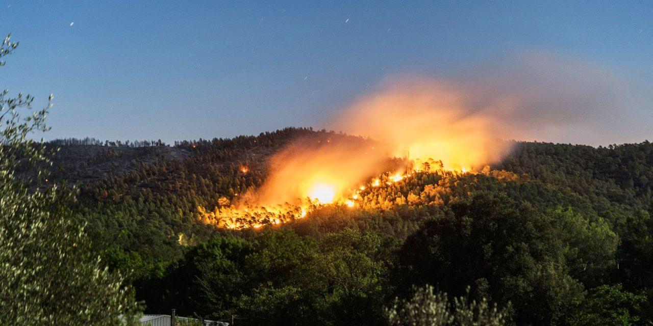 Tanger: L'incendie de la Forêt diplomatique maîtrisée, 36 ha ravagés