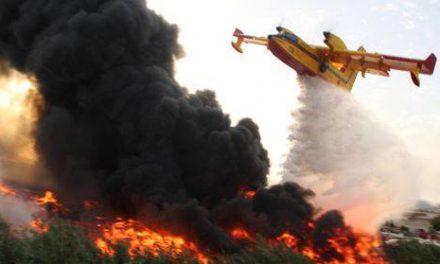 Chefchaouen: Un incendie ravage 300 ha de forêt