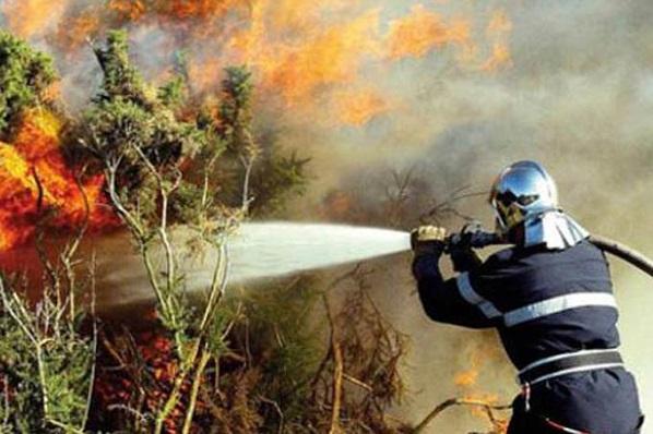 Incendie de forêt dans la préfecture de M'diq-Fnideq