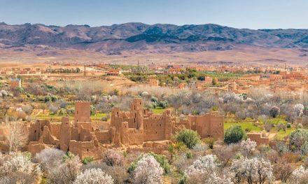 La Vallée des Roses et El Kelaa des M'Gouna