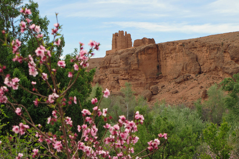 La Vallée des Roses et El Kelaa des M'Gouna 6