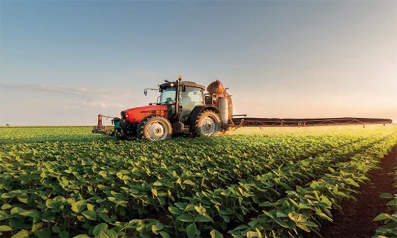 Saison agricole 2020-2021: 1,6 million de quintaux de semences disponibles