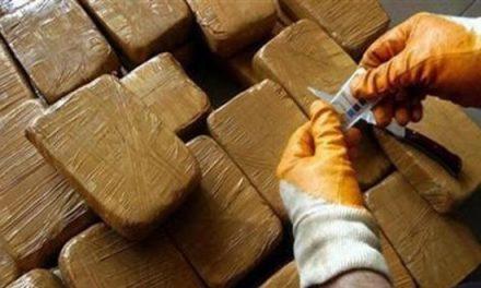 Nador : Mise en échec d'une tentative de trafic de 280 kg de Chira