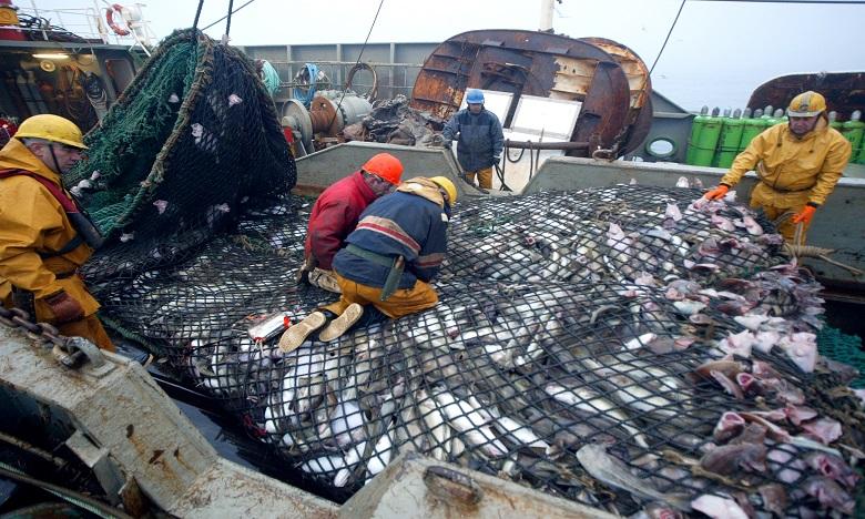 Hausse de 7% des exportations marocaines des produits de la mer à fin septembre 2020 1