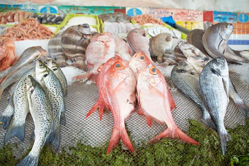 Hausse de 7% des exportations marocaines des produits de la mer à fin septembre 2020 2