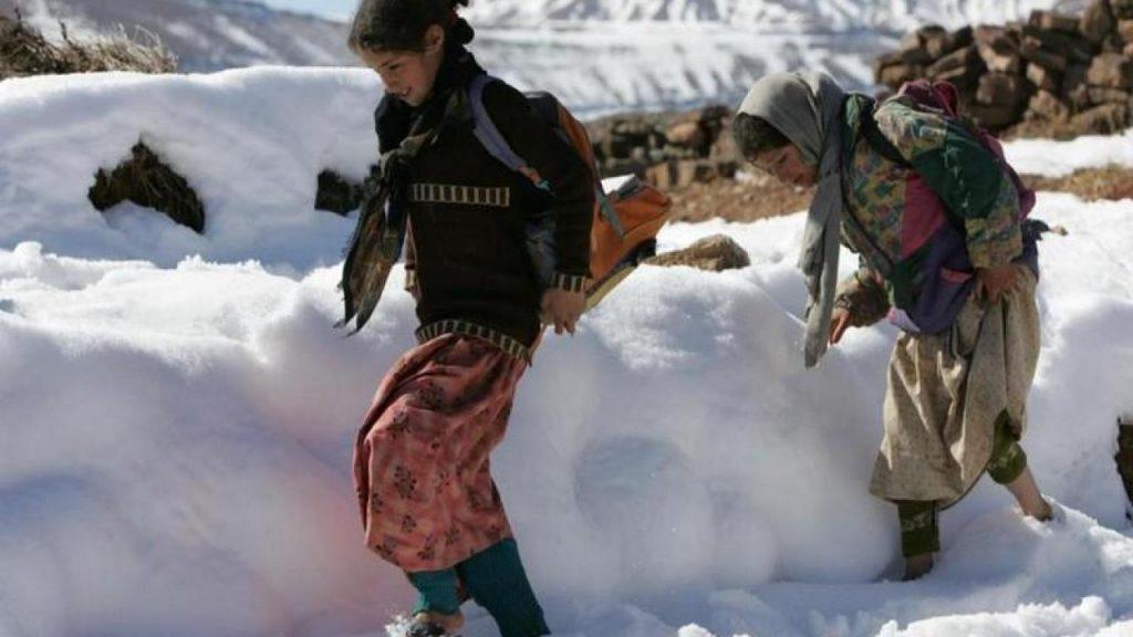 LES COMITÉS DE VEILLE PROVINCIAUX ÉLABORENT DES planS pour la lutte contre les effets de la vague de froid 1