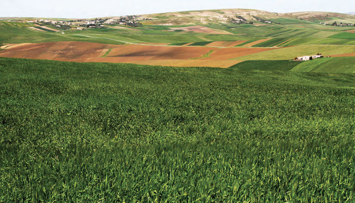 La Banque Mondiale appuie la stratégie Génération Green