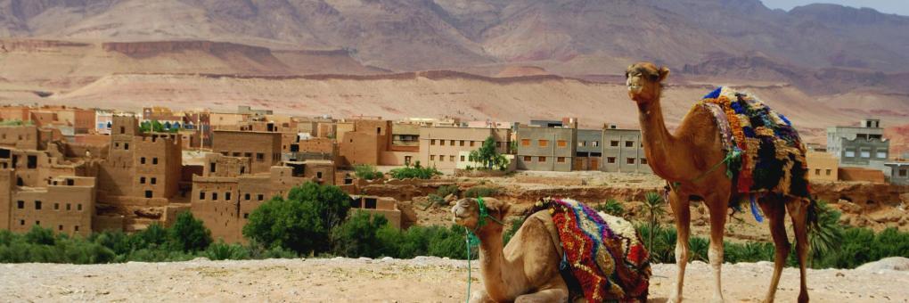 Guelmim-Oued Noun: La ministre du Tourisme plaide pour l'encouragement de l'investissement et de l'accès au foncier