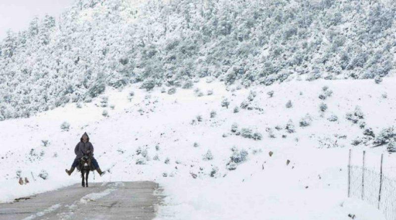 LES COMITÉS DE VEILLE PROVINCIAUX ÉLABORENT DES planS pour la lutte contre les effets de la vague de froid