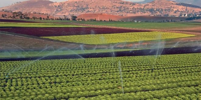 La Banque mondiale prévoit une croissance de 4% pour le Maroc en 2021 1