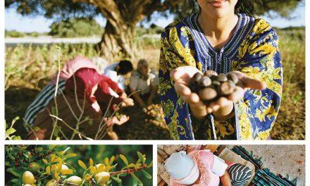 PLANTATION DE 2.205 HA D'ARGANIERS DANS LE CADRE DU PROJET DARED