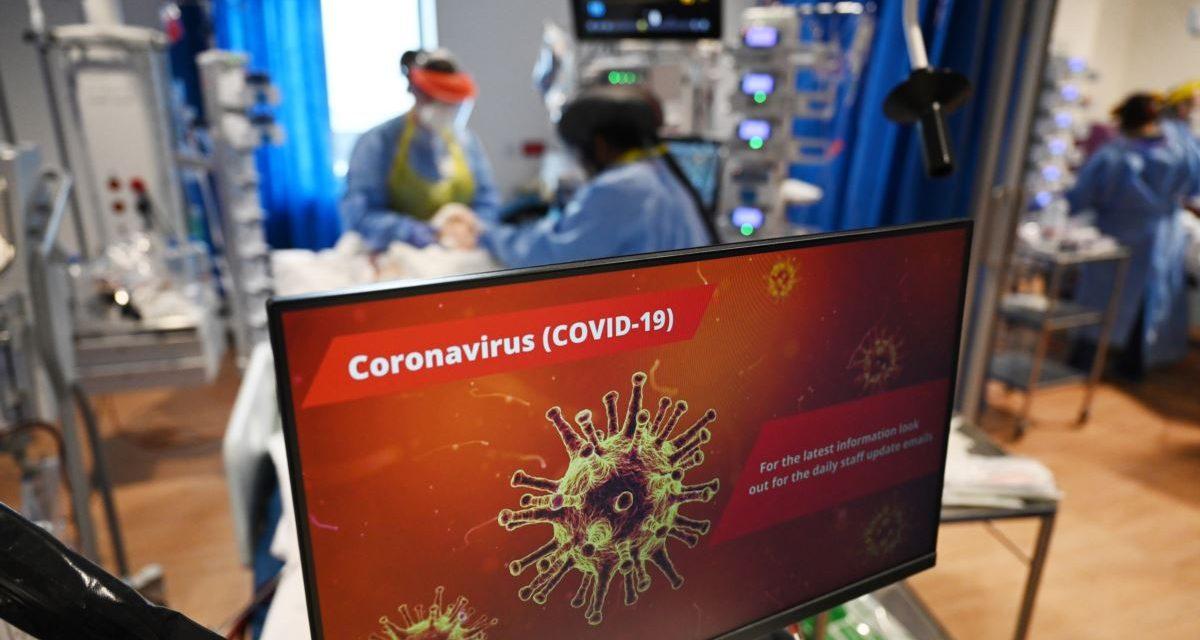 Le Maroc annonce la découverte de la nouvelle souche du Coronavirus sur son sol
