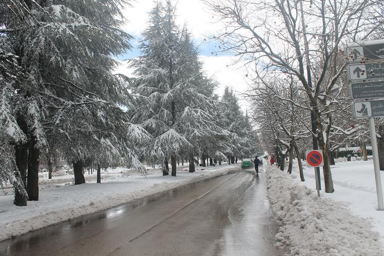 De fortes rafales de vent et chutes de neige vendredi et samedi