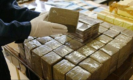 Tanger: 680 kg de drogue saisis