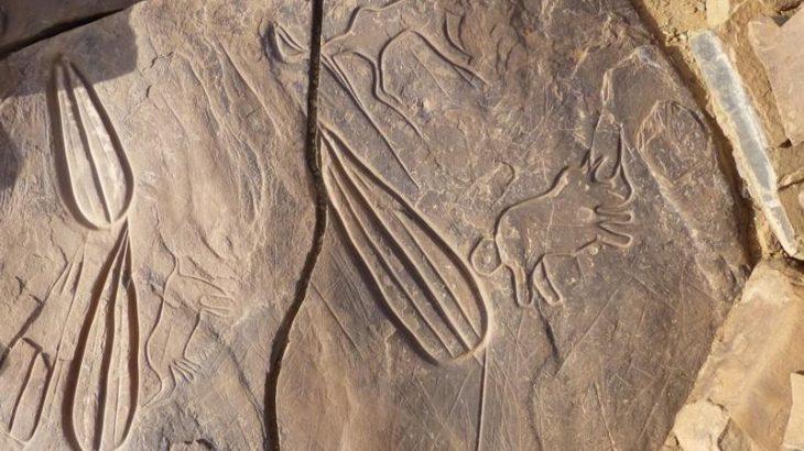 Dakhla-Oued Eddahab: 12 gravures rupestres SUR la liste du patrimoine national