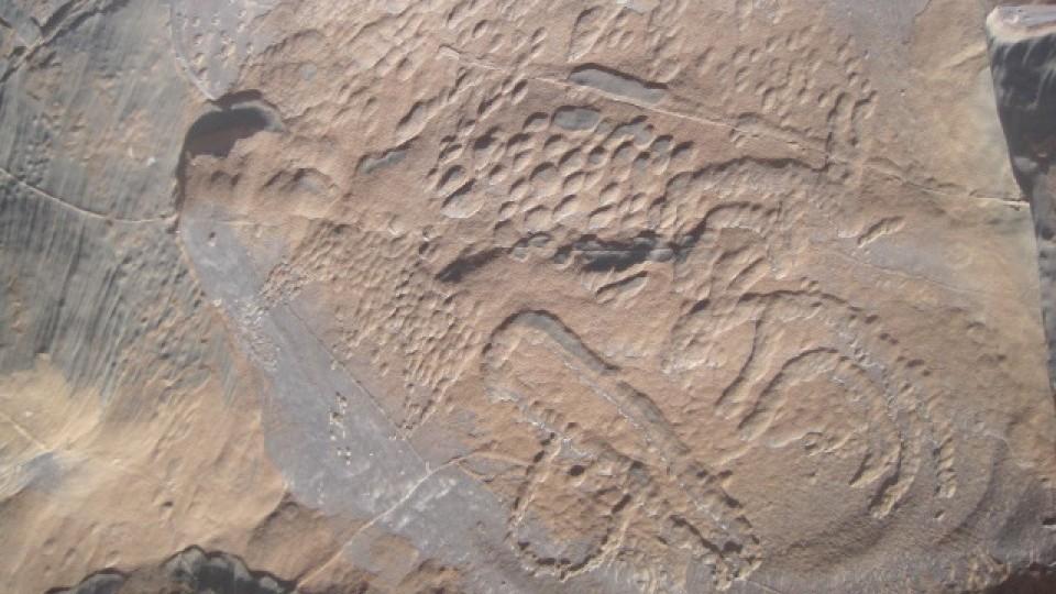 Dakhla-Oued Eddahab: 12 gravures rupestres SUR la liste du patrimoine national 2