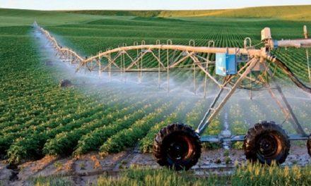 Développement agricole : Le Maroc cité en exemple par l'AAF-2021