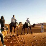 Plus de 3.000 guides touristiques agréés bénéficient d'indemnités forfaitaires