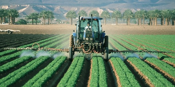 Maroc: une reprise économique portée par l'agriculture en 2021