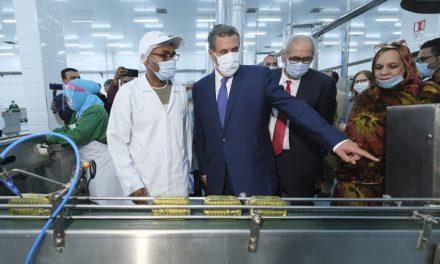 Dakhla: M. Akhannouch inaugure quatre unités de valorisation des produits de la pêche