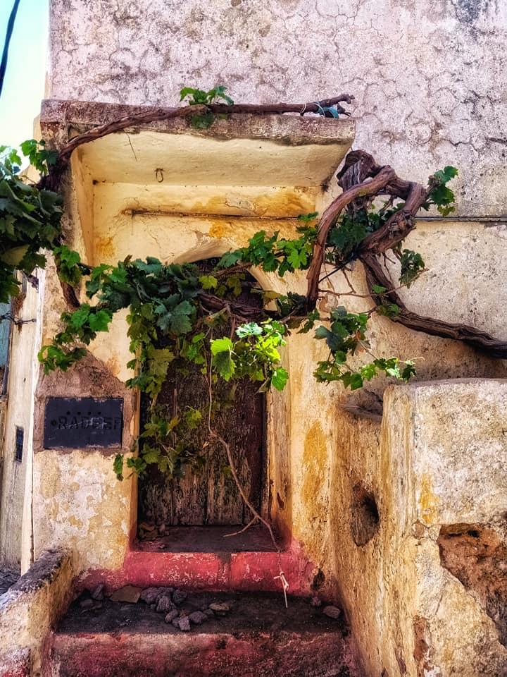 Les maisons troglodytes de Bhalil 7