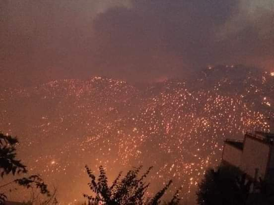 42 victimes dans les incendies qui ravagent le nord de l'Algérie 3