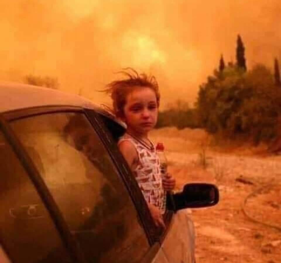 42 victimes dans les incendies qui ravagent le nord de l'Algérie 2