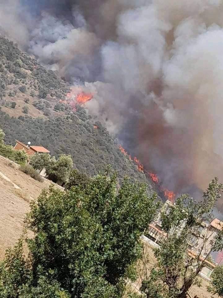 42 victimes dans les incendies qui ravagent le nord de l'Algérie 1
