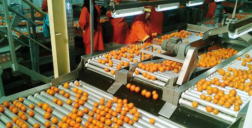 Agro-alimentaire: bonnes performances des exportations en 2021