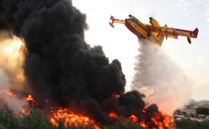 chefchaouen : 200 hectares de forêt brûlés