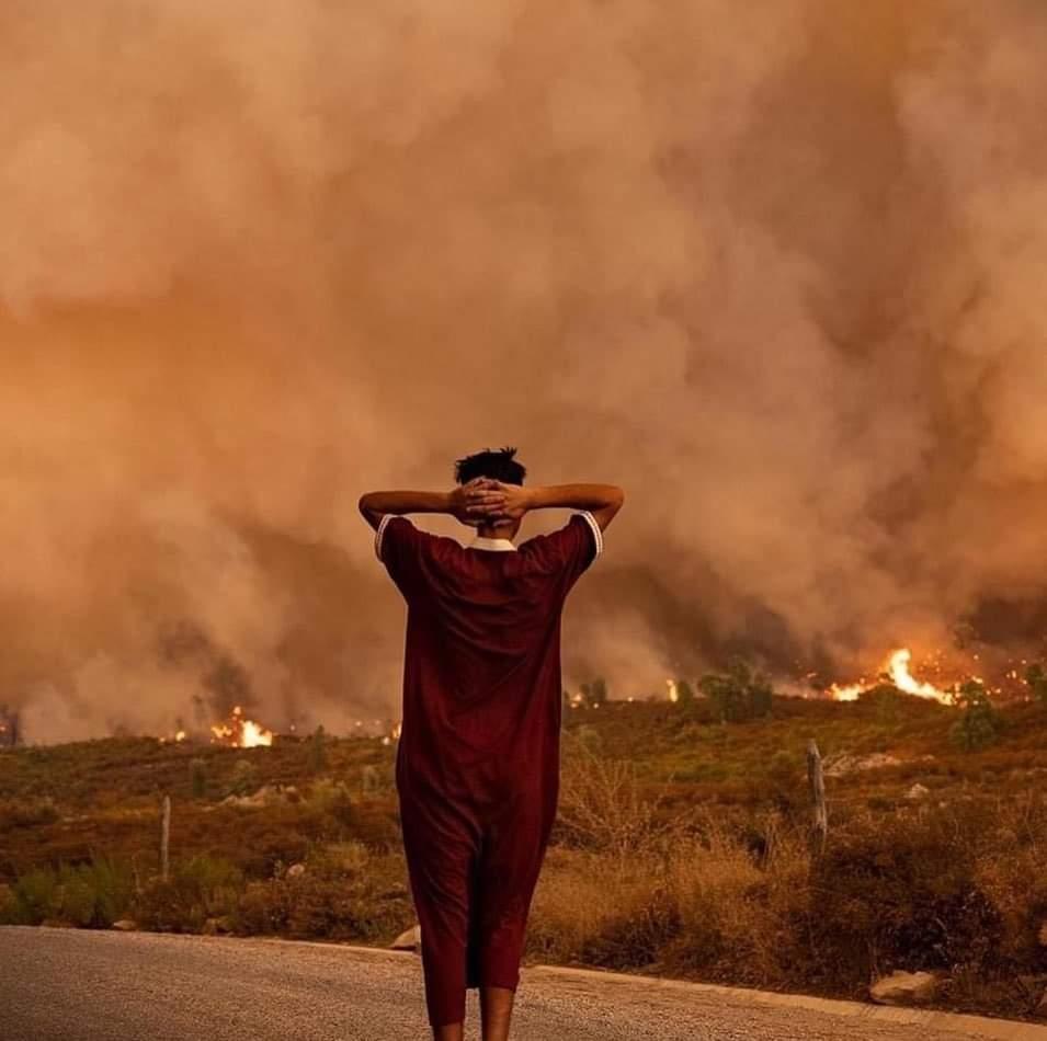 """Chefchaouen: l'incendie de la forêt Sougna """"contrôlé"""", environ 1.100 ha ravagés 1"""