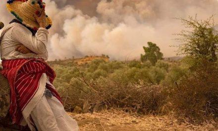 """Chefchaouen: l'incendie de la forêt Sougna """"contrôlé"""", environ 1.100 ha ravagés"""